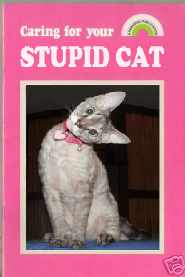 Stupid_cat_book
